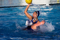 Girls' Water Polo, Winter 2012-2013